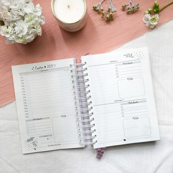 2 - Agenda diaria 13