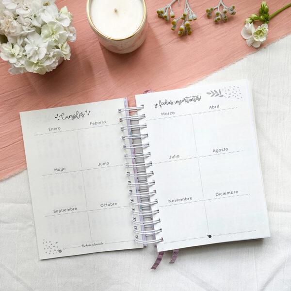 2 - Agenda diaria 8